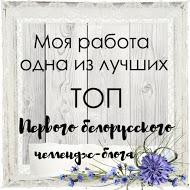 """Sono nel TOP/ ТОП в задании """"Зимние забавы"""""""
