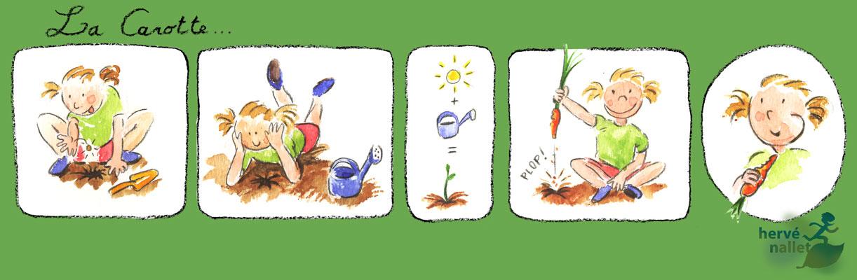 Herv nallet graphisme et environnement la carotte ou comment a pousse - Comment pousse les kiwi ...