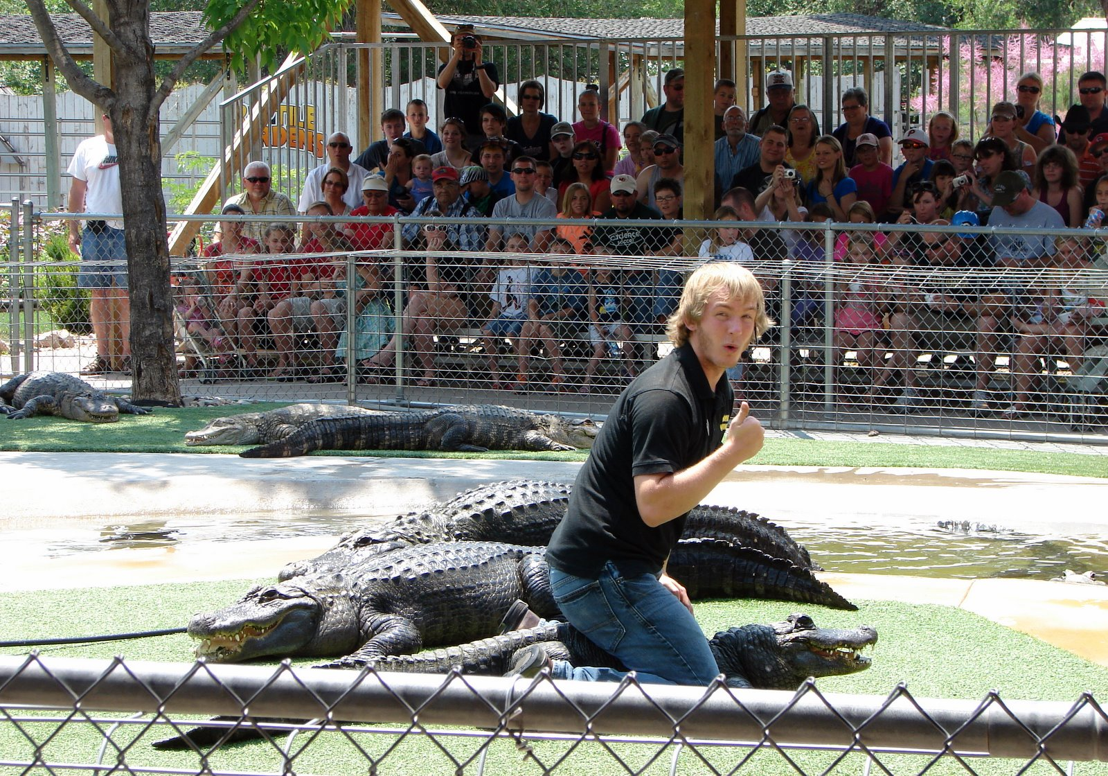 Rving And Travels Adventures With Suzanne And Brad Reptile Gardens Rapid City South Dakota
