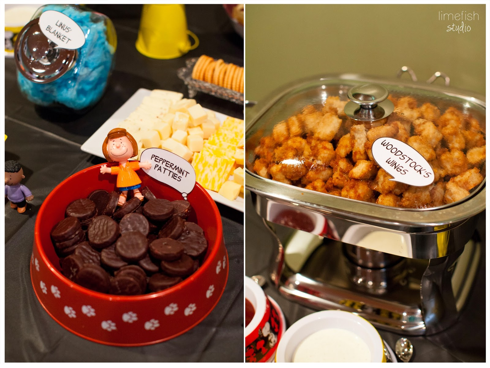 Peanuts Birthday Party | Northern Virginia Photographer