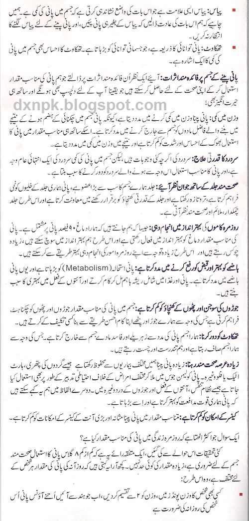 Essay On College Life In Urdu
