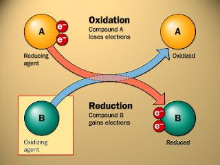 gambaran penjelasan reaksi reduksi dan oksidasi