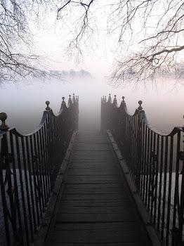 Camino hacia los sueños~