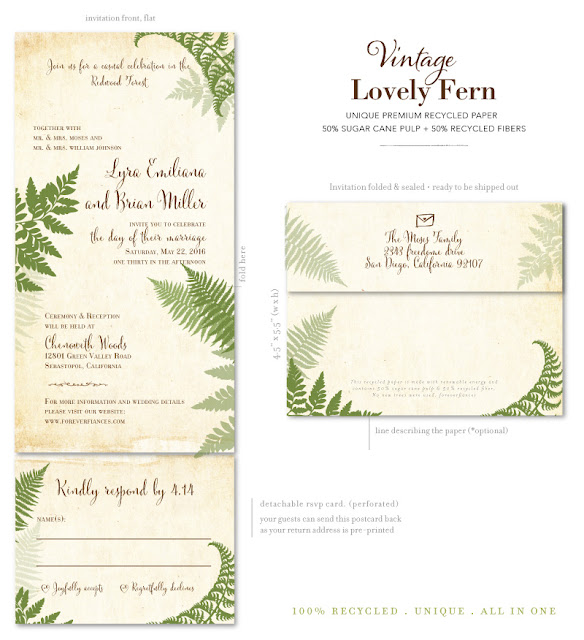 Lovely Fern All-in-One