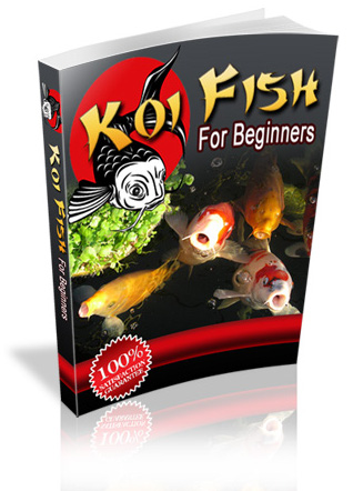 You have Always wanted a Fish Pond... now you can...
