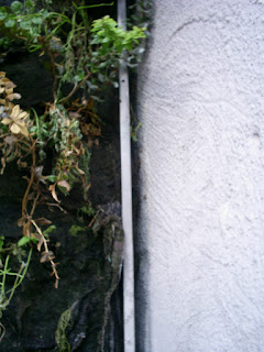 detalle jardín vertical Caixa Forum