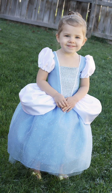 Cinderella Princess Dress by Homemade Toast