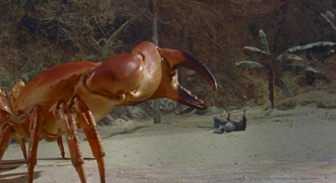 Mysterious Island 1961 Bee
