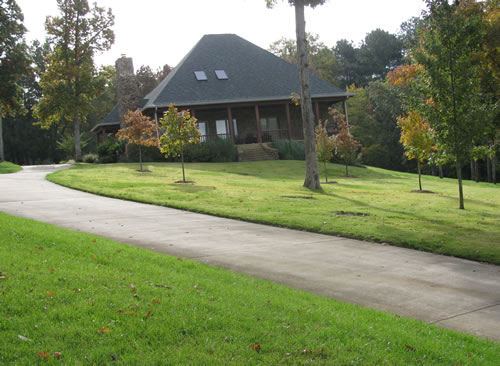 Landscaped Lawn-3