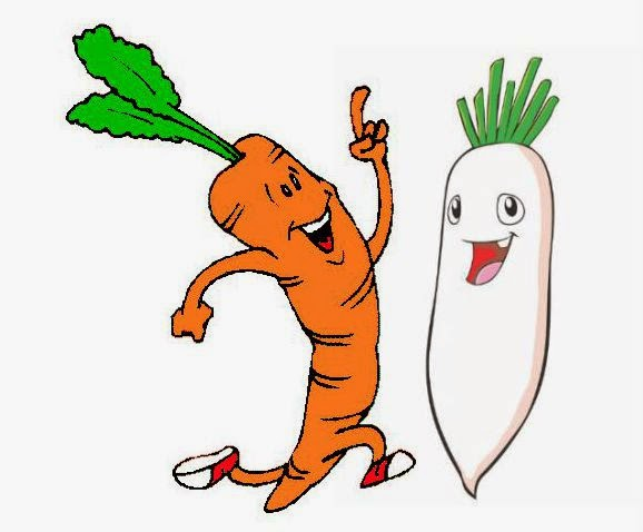 LA ZANAHORIA Y EL NABO. DIBUJO (CARROT AND NABO. DRAWING)