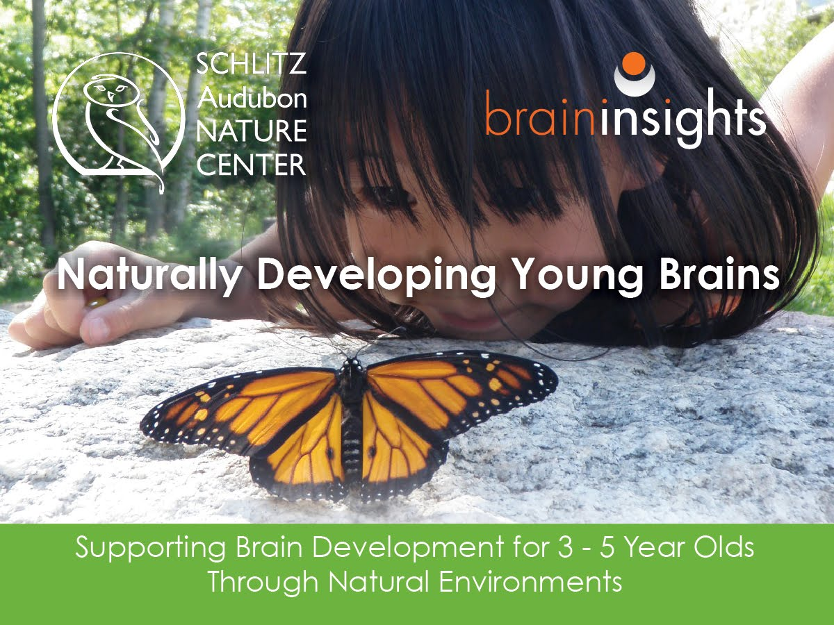Naturally Developing Young Brains!  -- www.BrainInsightsonline.com