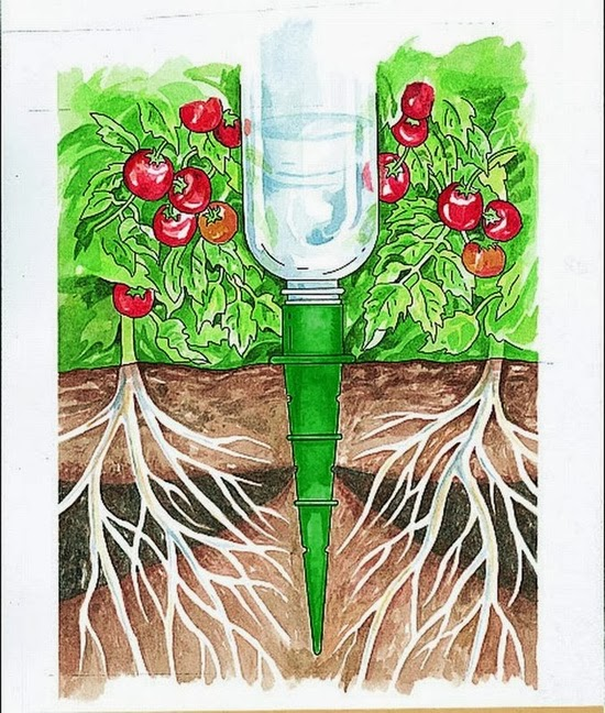 Garden Self-Watering Cone