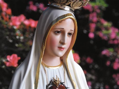 Frases Marianas Sim Sou Católico