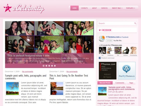 Free Celebrity  WordPress Theme - eCelebrity
