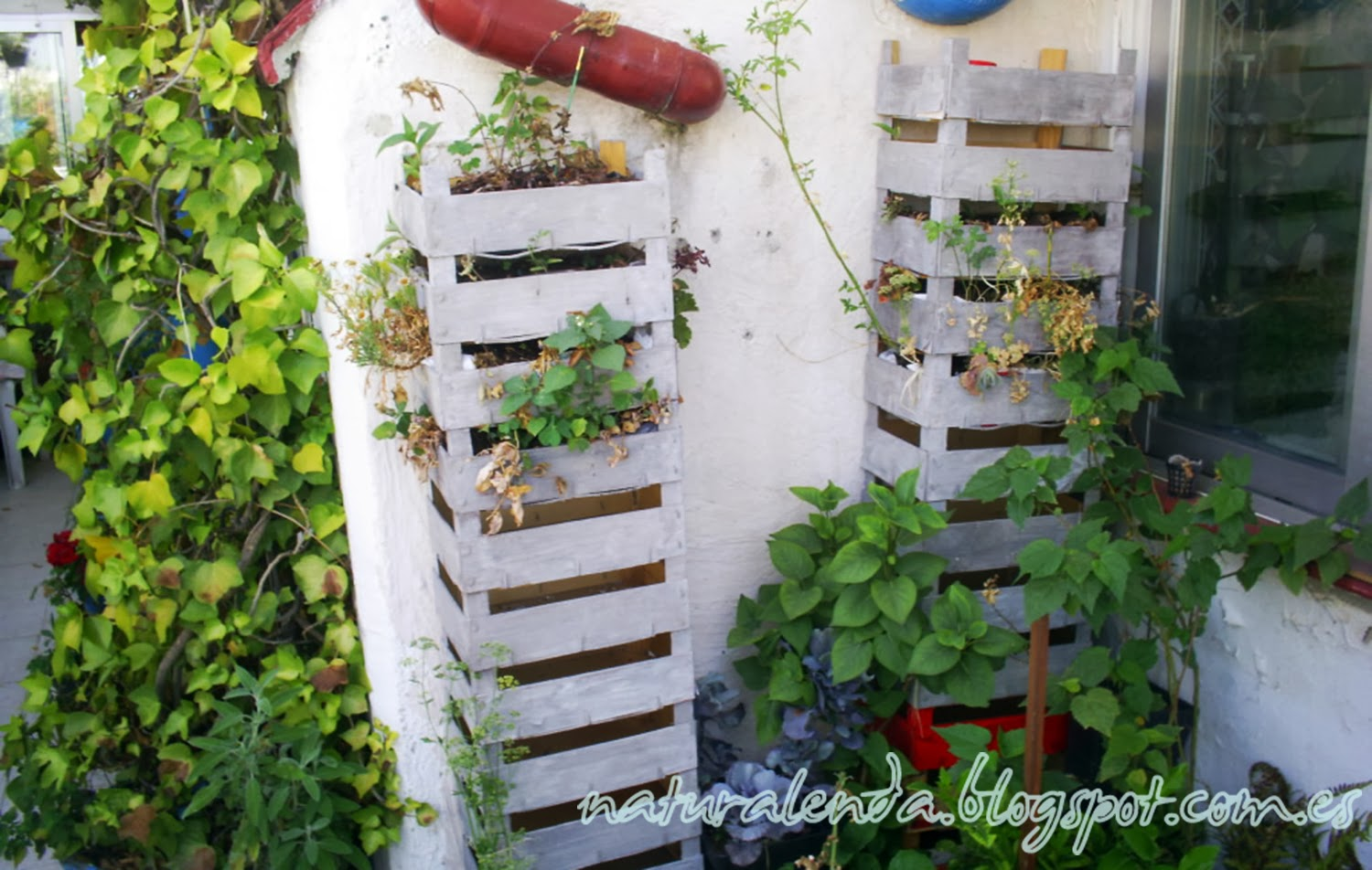 Hacer jardin vertical perfect with hacer jardin vertical - Construir jardin vertical ...