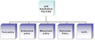 "<img src=""Sorts of Life Insurance Policies.jpg"" alt=""Sorts of Life Insurance Policies"" style=""width:304px;height:228px;"">"