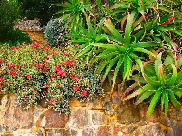 jardins cap roig