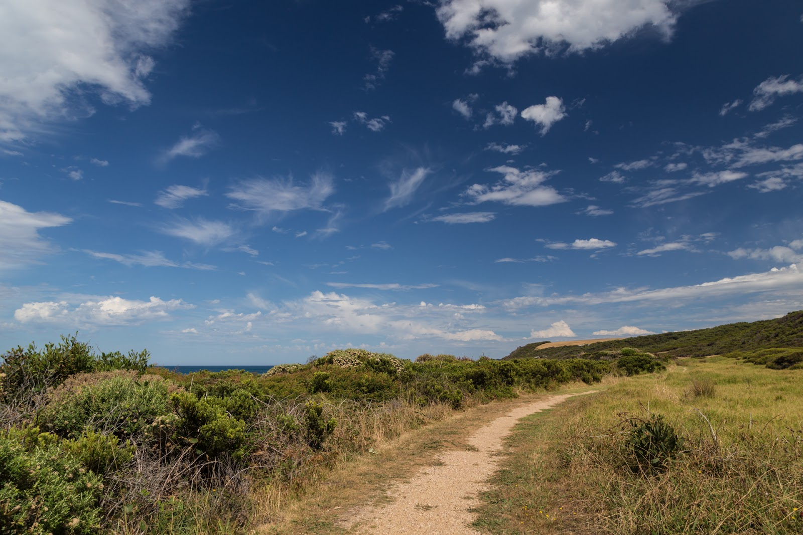 great ocean walk track at marengo