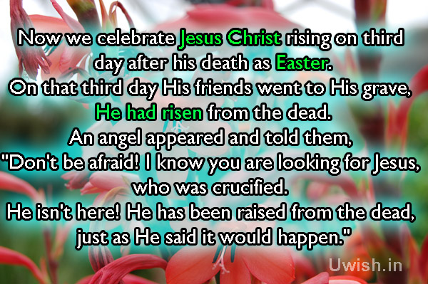 Why we celebrating Easter?  Happy Easter, Easter quotes e greeting card and wishes.