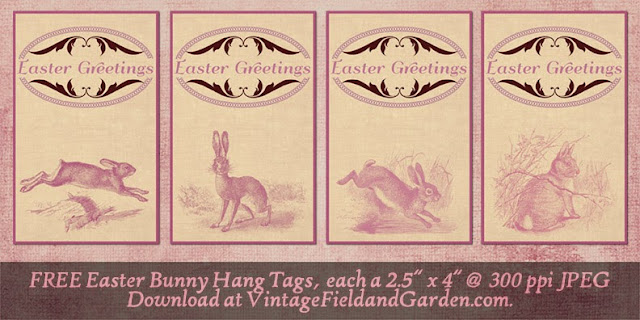 http://1.bp.blogspot.com/-QCOOHXDRj84/U0QTXF9i2TI/AAAAAAAAIjM/8vExbsSRqEg/s640/Easter+Bunny+Hang+Tags+Preview.jpg