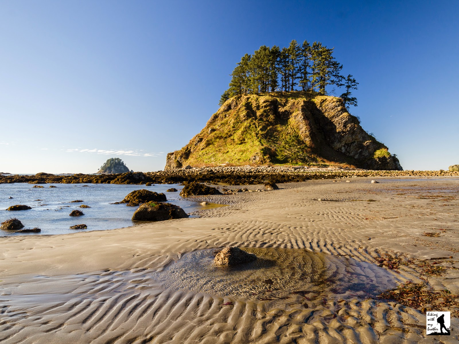ozette triangle cape alava sand point loop hiking with my brother