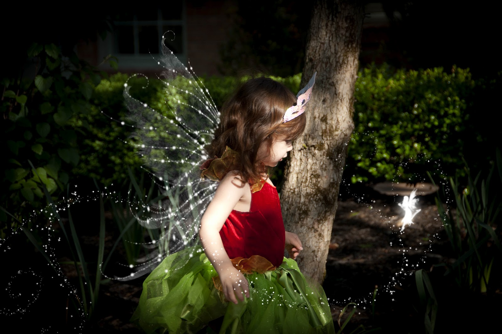 image gallery of real pixies and fairies