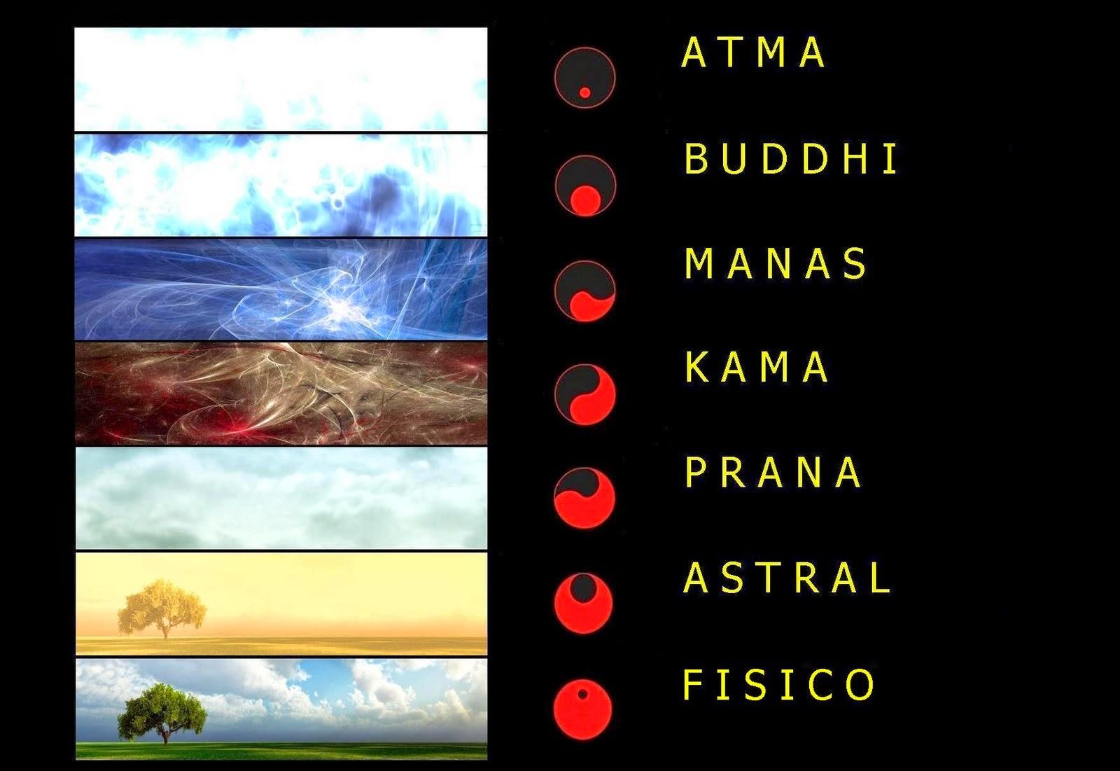 différents niveaux-vibratoires