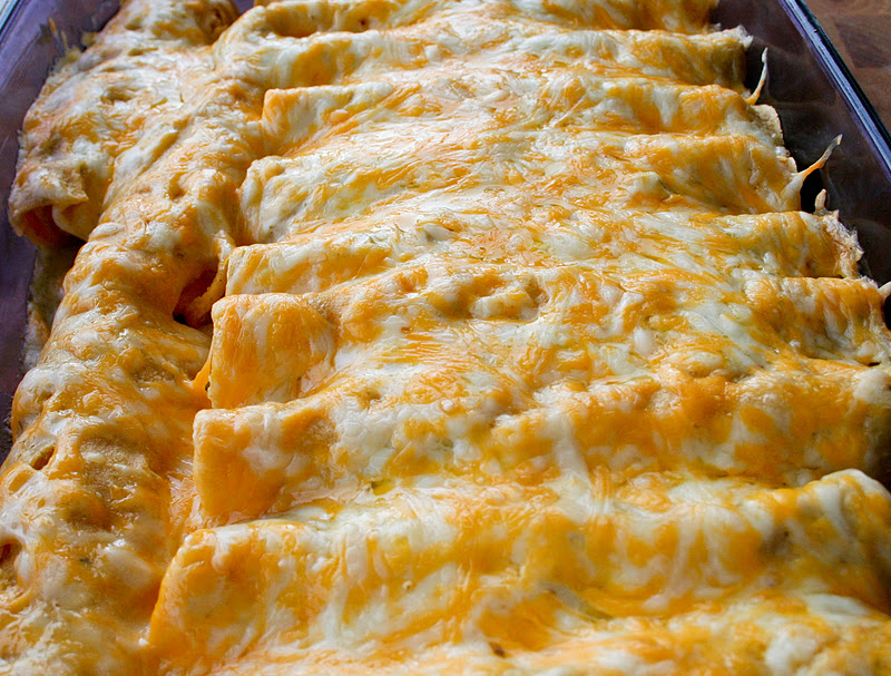 chicken enchiladas white sauce