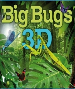 Big Bugs