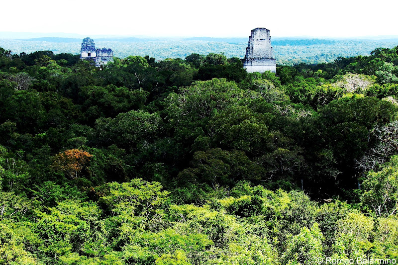 Star Wars View from Tikal Temple IV Guatemala