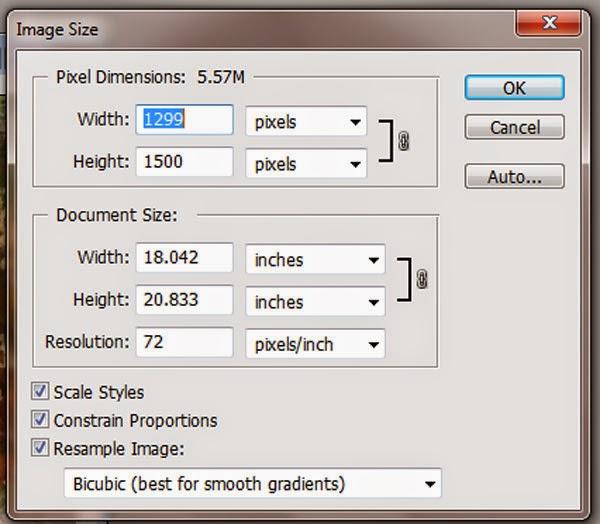tutorial merubah ukuran foto image size