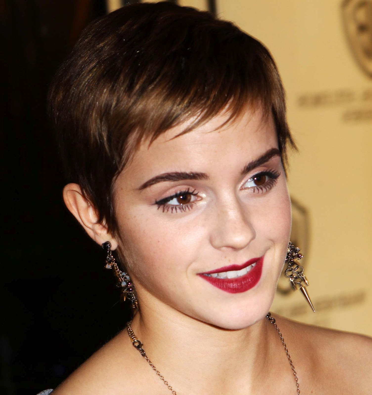 How To Pretend You Arent Ugly Poll 1 Pixie Cuts
