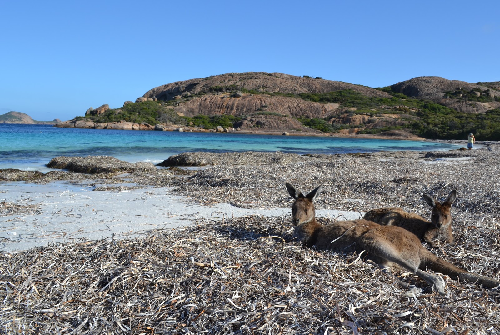 5 Places To Visit In Western Australia The World Is Waiting