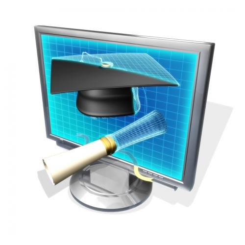 Online Learning - Have a Vision, Be Demanding