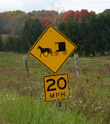 Horse & Buggy Road Sign