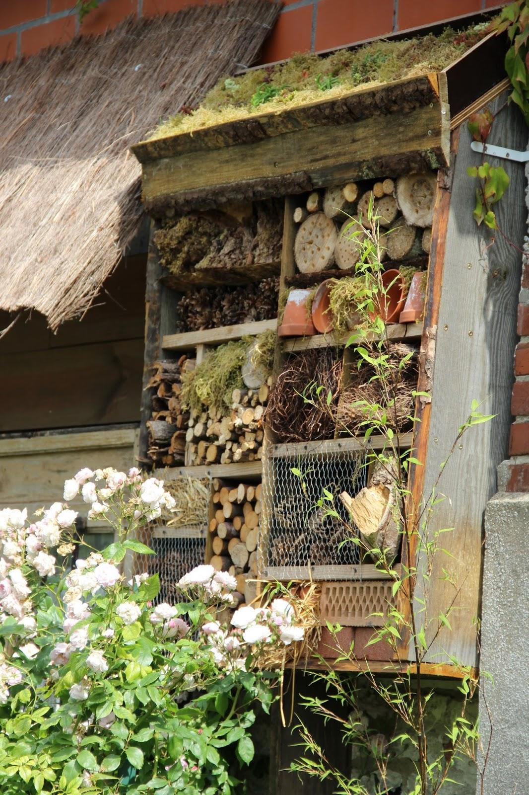 Derri re les murs de mon jardin p riple en belgique jour 1 le paradis d isabelle - Derriere les murs de mon jardin ...