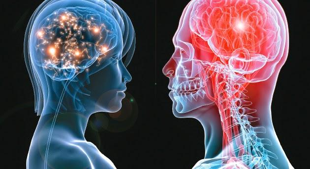 GUÍA del BUSC@DOR: La Anatomía de las Emociones.