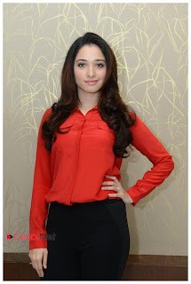 Tamanna Latest Pictures in Black Skinny Jeans at Tadakha Movie Press Meet ~ Celebs Next