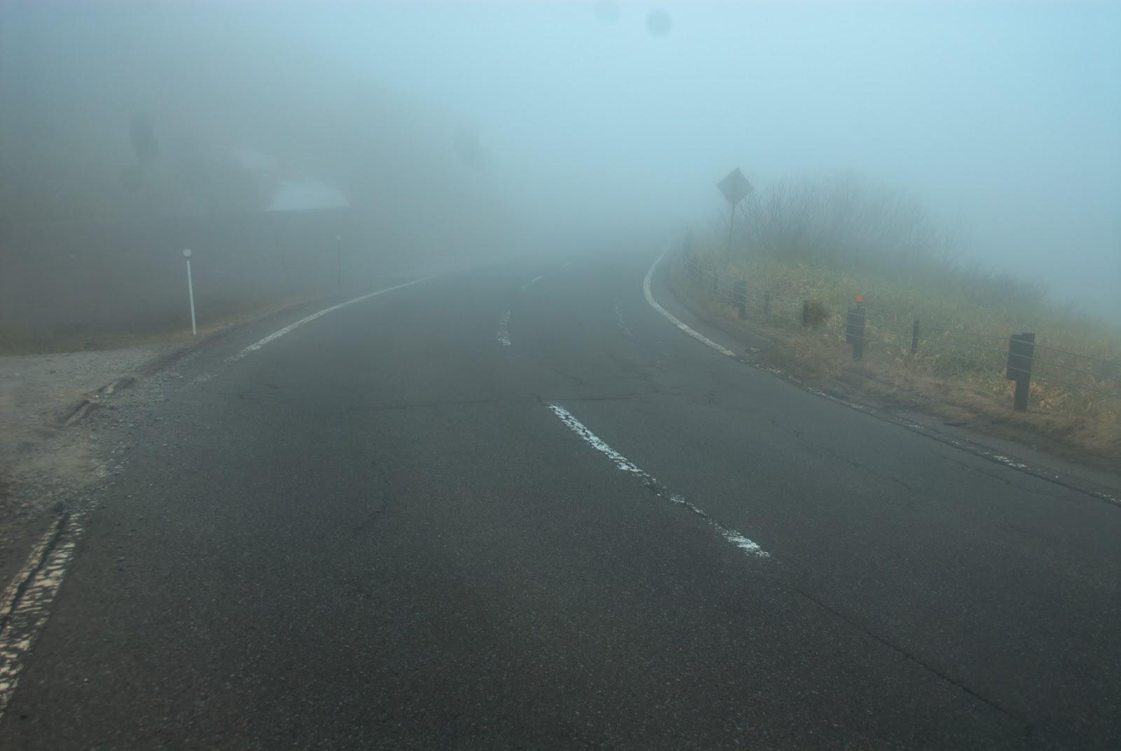 霧が深く視界が悪く何も見えない