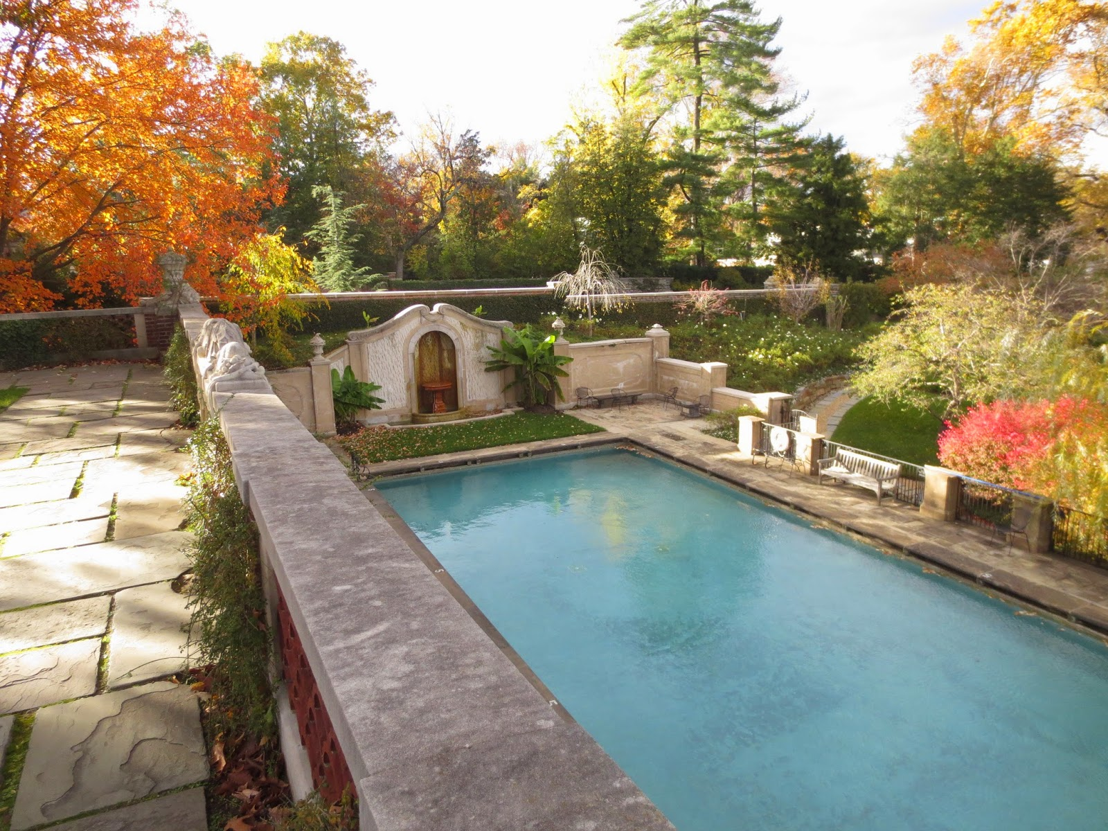 The Swimming Pool. PSA: If You Are A Dumbarton Oaks Employee You Can Swim  Here.