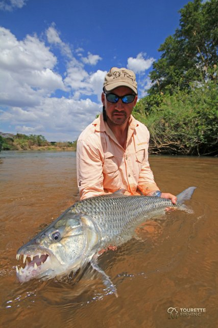 Big fishes of the world tigerfish hydrocynus forskahlii for Best fishing in the world