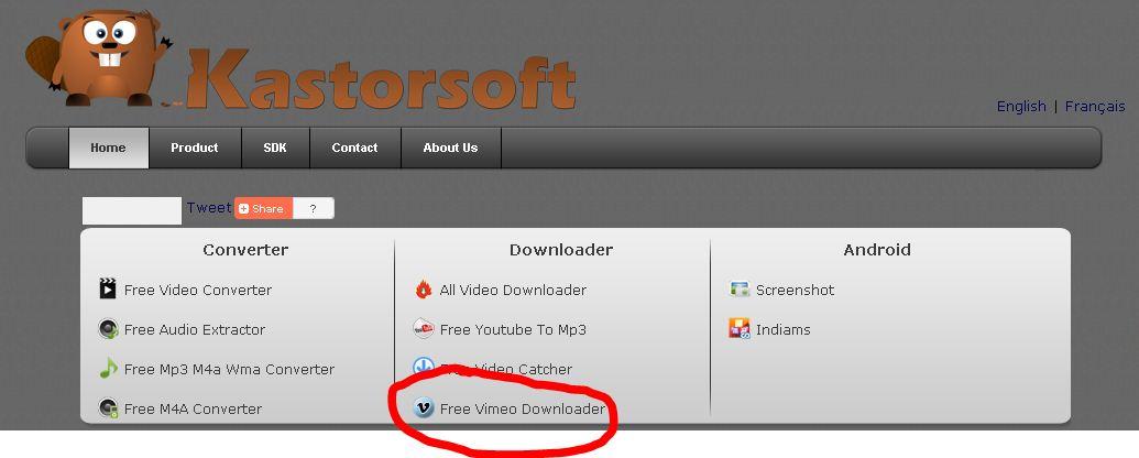 Kastor vimeo downloader website