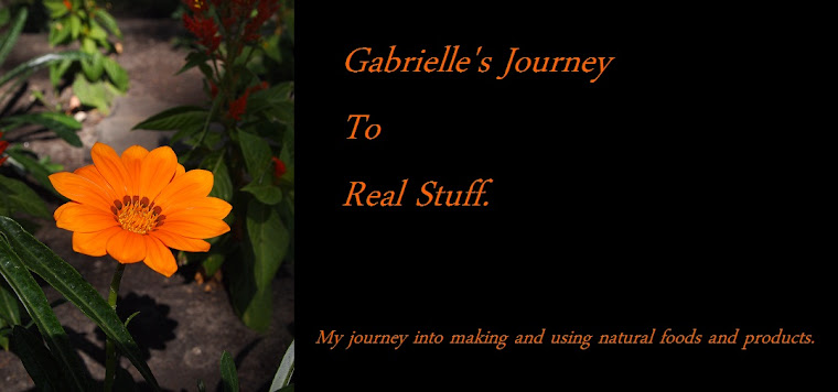 Gabrielle's Journey To Real Stuff
