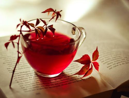 Os 10 benefícios do chá vermelho para saúde