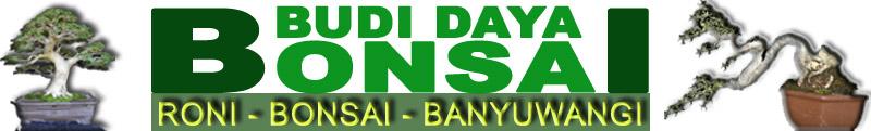 Bonsai - Budi Daya