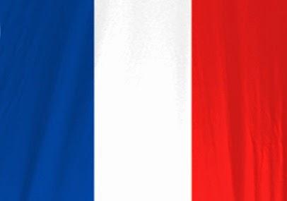 Baixar Patch França Brasfoot 2015 Download