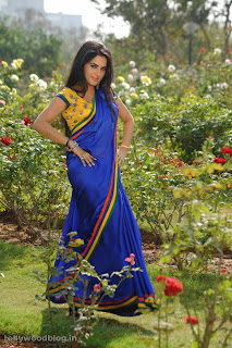 kavya singh  in blue saree Pictures(16).JPG