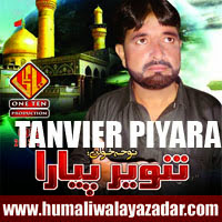 http://ishqehaider.blogspot.com/2013/11/tanvier-piyare-nohay-2014.html