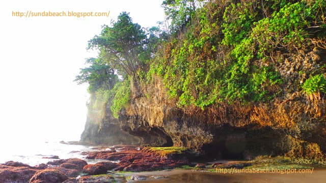 a picture of a reef at batu karas indonesia