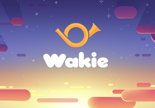 wakie,wakie Application to awaken sleeping
